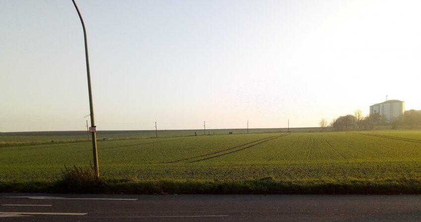 Als Bauland vorgesehene Ackerfläche am Isinger Feld Foto: Potthoff